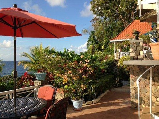 Golden Clouds Villa Estate: grounds