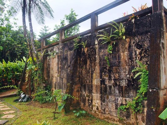 Wall on the grounds of the Rainforest Inn