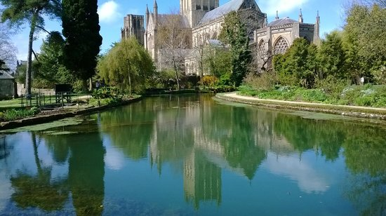 The Bishop's Palace and Gardens: lovely spring pool with Cathedral background - unique in UK