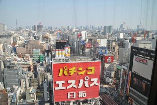 Shinjuku Prince Hotel : The view from my room