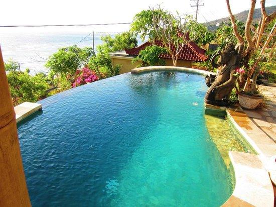 Paradise Bungalows Bali: Pool