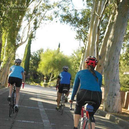 Canyon Ranch in Tucson: Off for a bike excursion