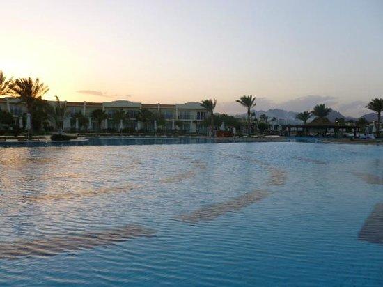 Hilton Sharks Bay Resort: piscina