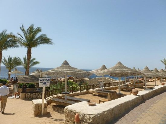 Hilton Sharks Bay Resort: Praia