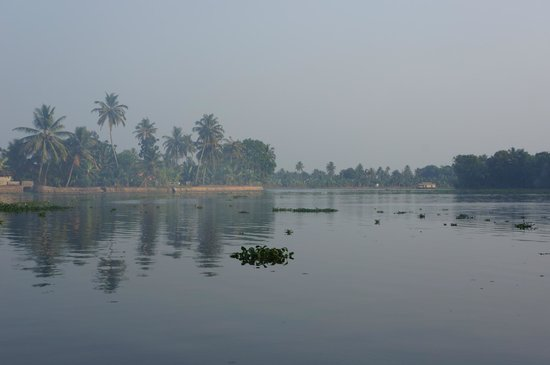 Our Land Island Backwater Resort : River