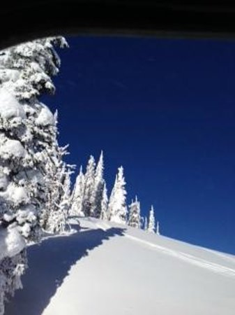 Great Northern Powder Guides: Perfect Pow