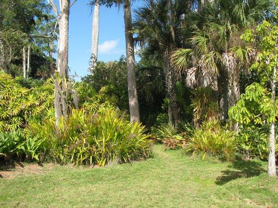 Naples Zoo at Caribbean Gardens : Enjoying the scenry