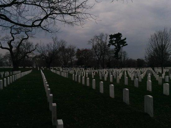 DC by Foot : Arlington