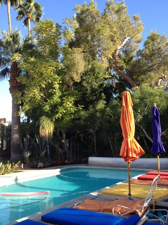 Casa Ocotillo: The Pool