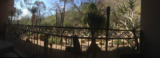 The Phoenician, Scottsdale: View from our room!