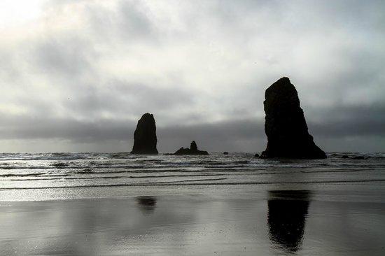 The Ocean Lodge: Needles
