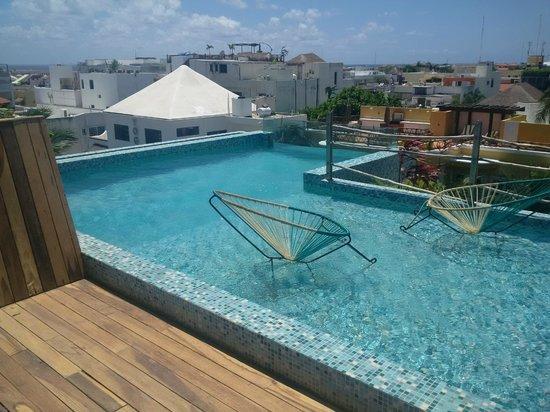 Be Playa Hotel: Rooftop pool