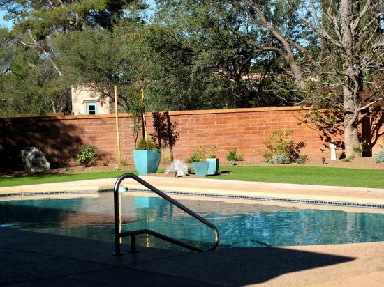 Tubac Center of the Arts: Pool and roses