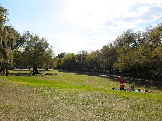 Blue Springs Park: The park