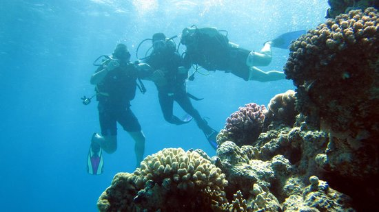 New Dawn Tours - Day Tours : 2 out of the 4 of us with PADI instructor