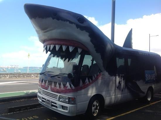 Kelly Tarlton's Sea Life Aquarium : Free transport to and from the Aquarium
