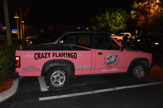Crazy Flamingo: Might help you find the place when you are ready to give up!