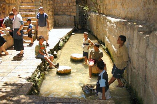 Jerusalem Walls - City of David National Park : The well of Shiloah