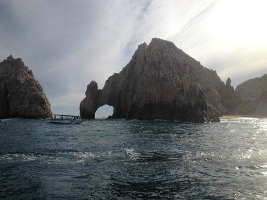 El Arco de Cabo San Lucas : El Arco