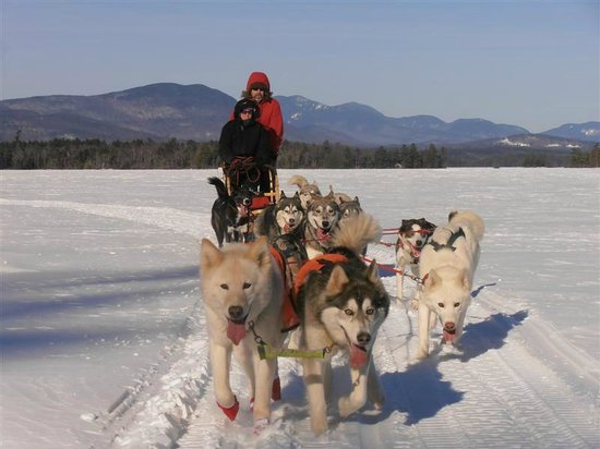 Valley Snow Dogz: Breathtaking excursion across Squam Lake