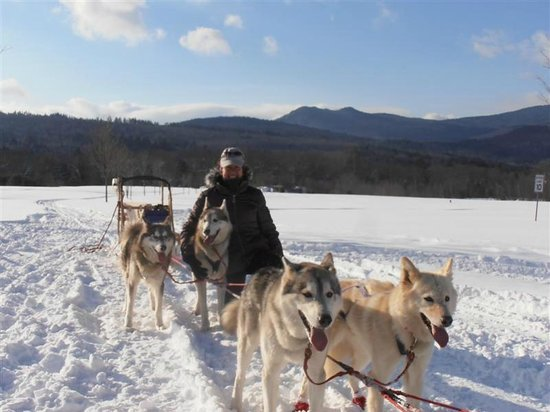 Valley Snow Dogz: Beautiful vistas from the Sugar Shack in Thornton NH