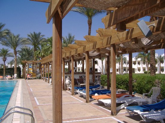 Sharm Plaza Hotel : Heated Pool Bar