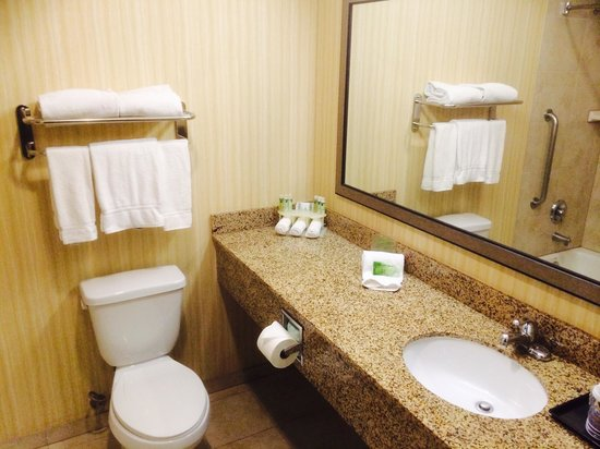 Holiday Inn Express Los Angeles-LAX Airport: Bathroom was clean.
