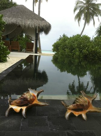 The Sun Siyam Iru Fushi Maldives: Вид из бунгало
