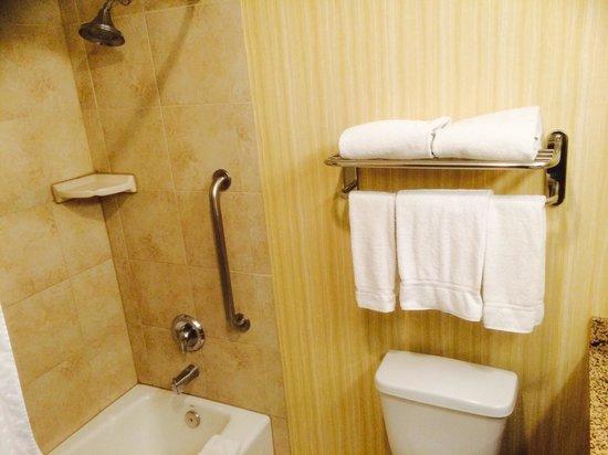 Holiday Inn Express Los Angeles-LAX Airport : Bathroom photo#2