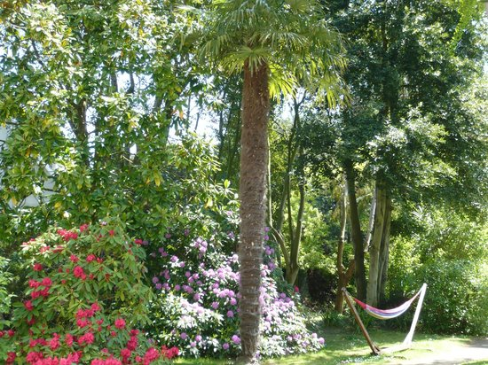 Villa Saint Raphael: Le jardin de la Villa