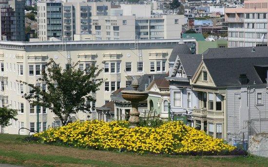 Painted Ladies - San Fran
