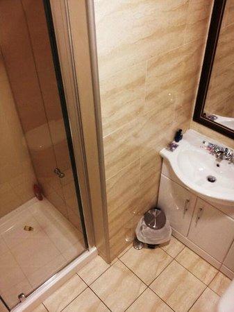 Alexander Thomson Hotel: great power rain/shower