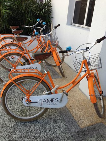 Royal Palm South Beach Miami, A Tribute Portfolio Resort: The bikes that you can use for free - they are great!