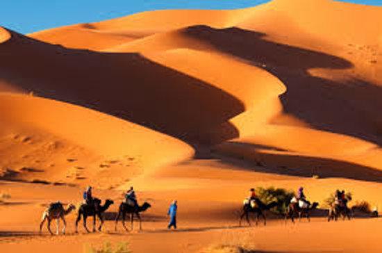 Desert Berber Fire-Camp: trips in desert