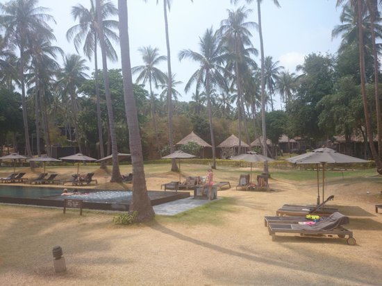 Haadtien Beach Resort: Grounds