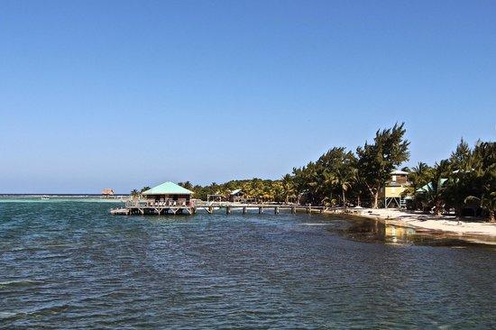 Isla Marisol Resort: Bar