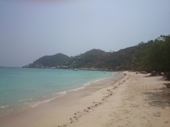 Haadtien Beach Resort: Beach view