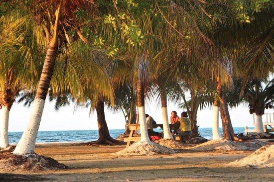 Isla Marisol Resort : Making new friends