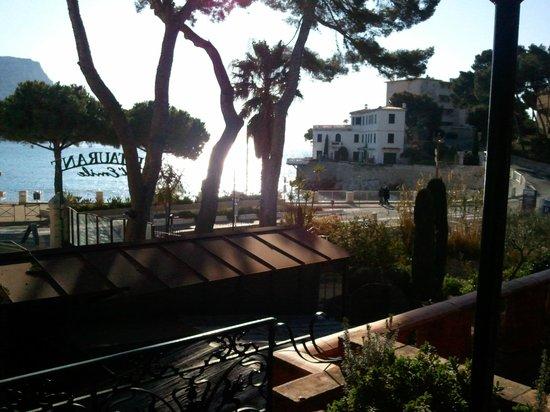 Jardin d'Emile: vue du balcon