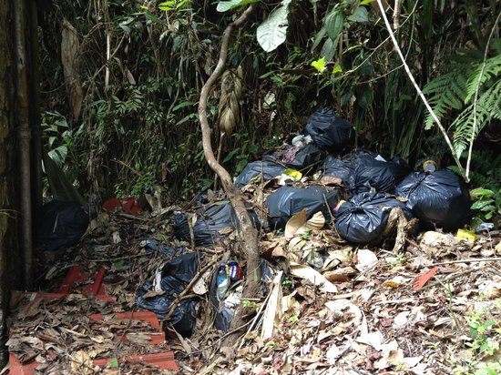 Jeriau Waterfall : Rubbish bags deposited by staff