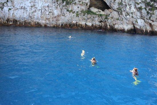 Poor Knights Island Marine Reserve : Swimming ©BenjaminWhitehead