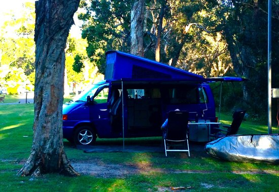 Ingenia Holidays South West Rocks: Our campsite in the trees