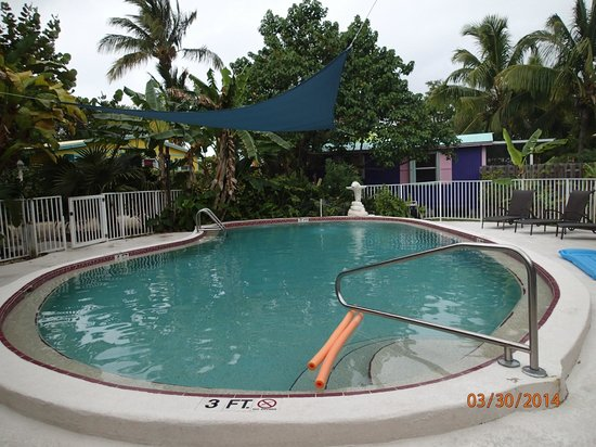 Little Conch Key: Heated Pool