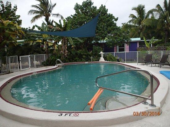 Little Conch Key : Heated Pool