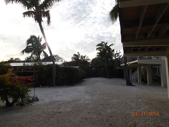 Little Conch Key : Resort grounds