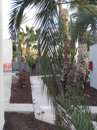 Caybeach Caleta : walk ways around the apartments