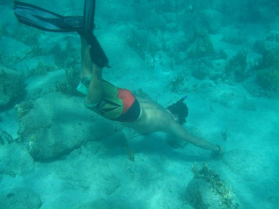 Cruise Ship Excursions: Dusty diving to find us cool stuff