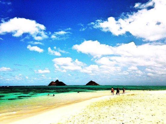 Lanikai Beach: 駐車場もなく、わかりづらいけど、こんな綺麗な海があるとは。