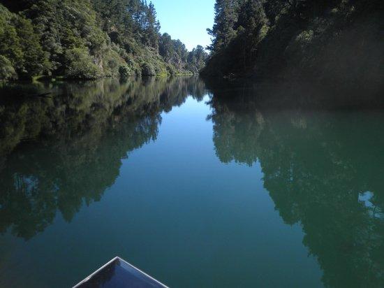 NZ Riverjet Thermal Safari: Serence View