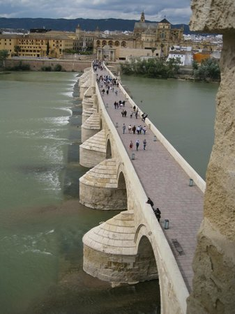 Calahorra Tower: Mezquita-cathedral and bridge from tower